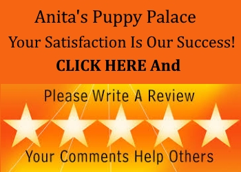 Anita's Puppy Palace Reviews