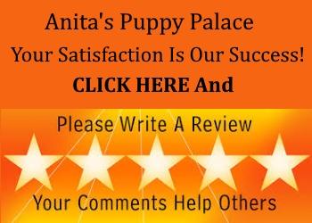 Anita's Puppy Palace Reviews